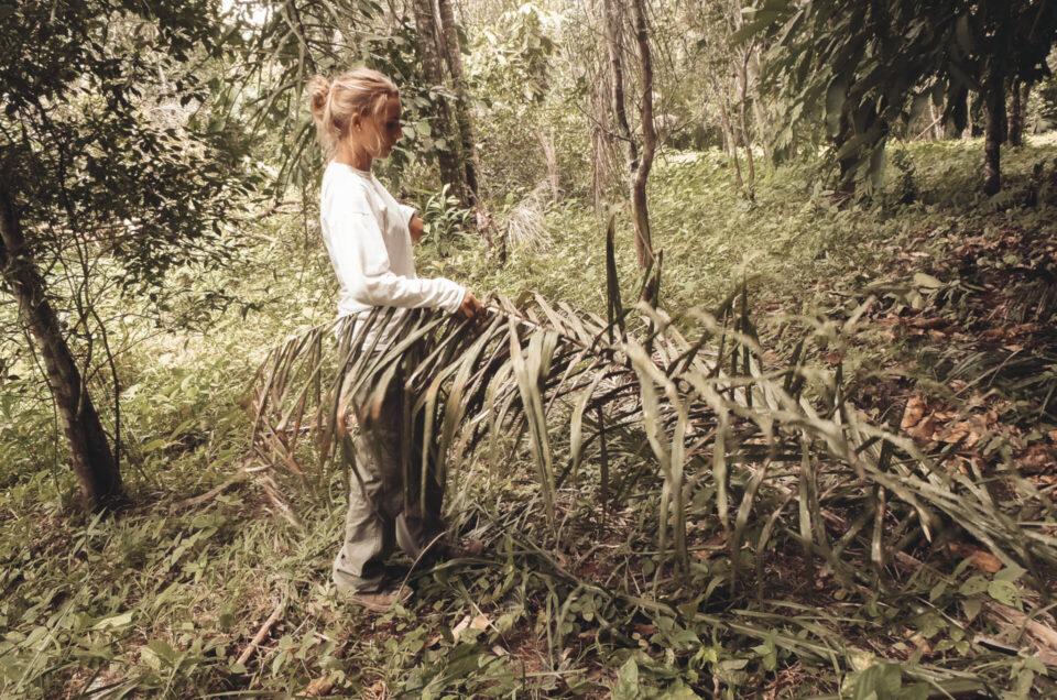 Retour à l'instinct primaire en forêt amazonienne bolivienne